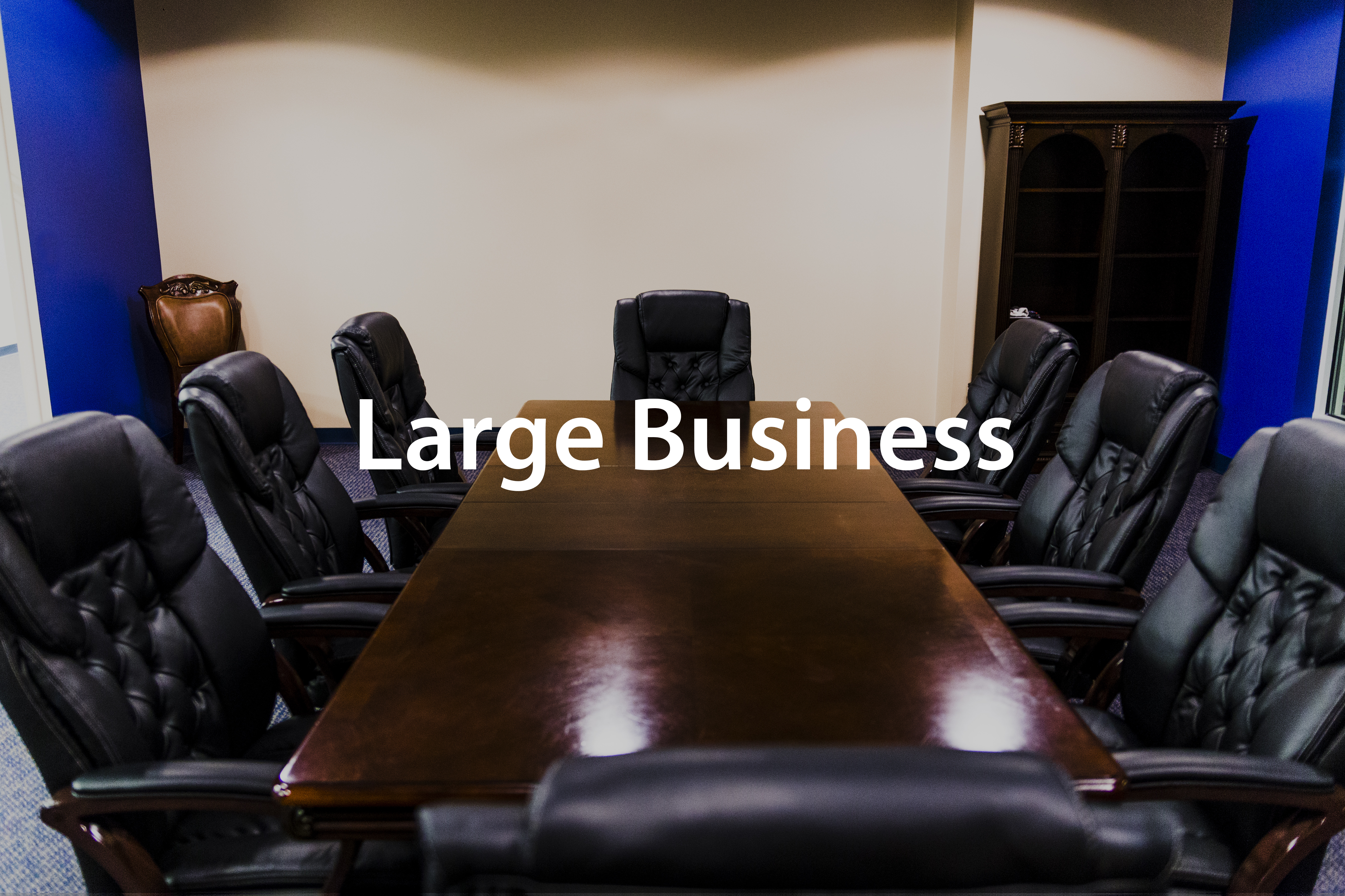 Large Business