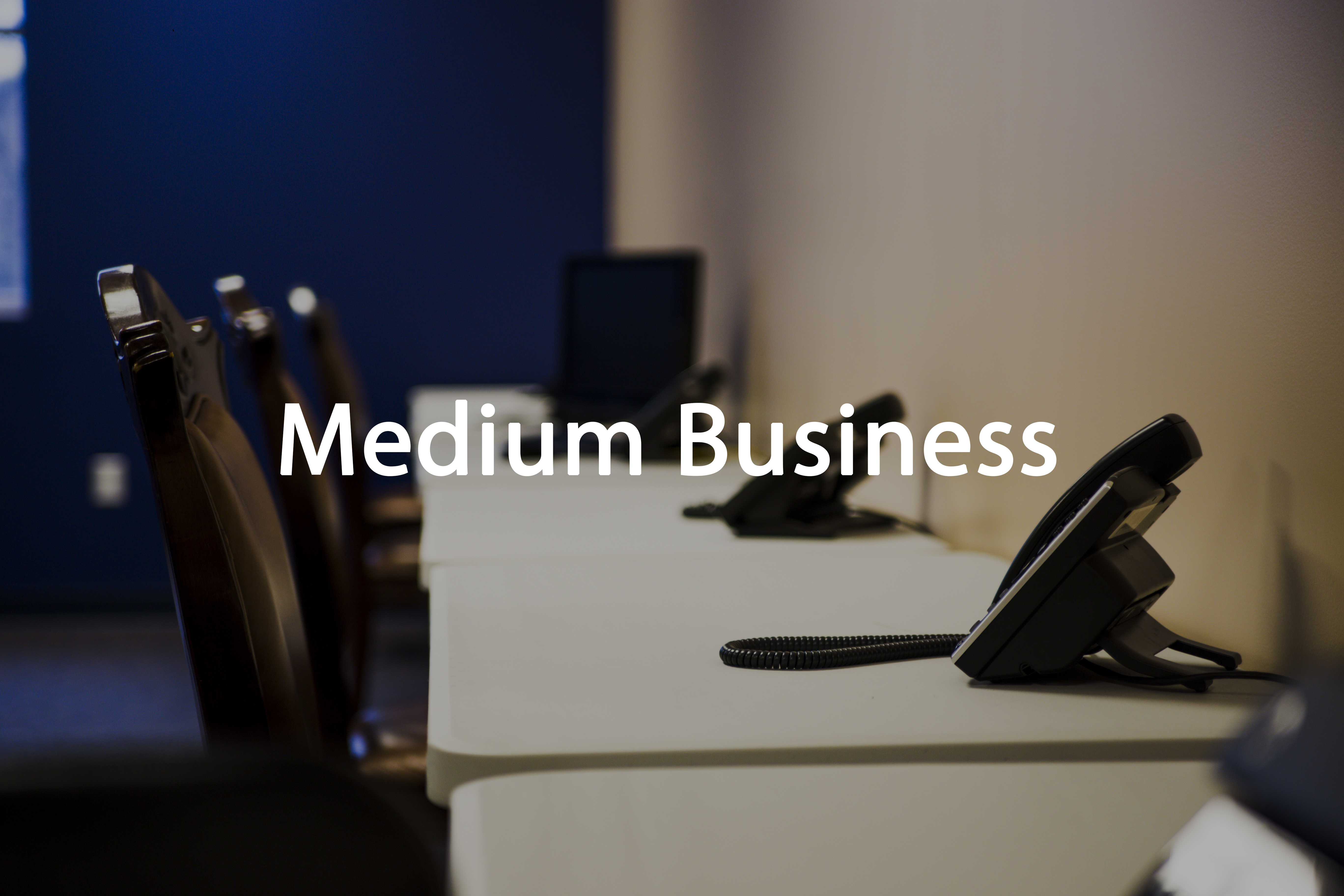Medium Business